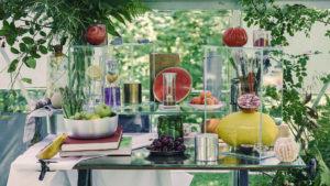 Dr. Reckhaus Fruchtfliegenretter Stillleben gross, Insekten und Blumen Früchten